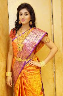 Shamili in Golden Jewellery and Kanjiwaram Saree Spicy Pics