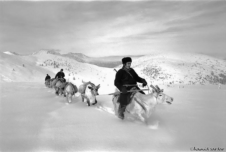 reindeer people Dukha people Hamid Sardar-Afkhami-3