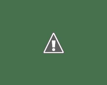 crostatine con creme caramel e copertura fondente