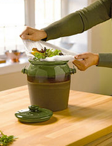 The Easy Solution to Enjoy the Benefits of Composting without the Mess!