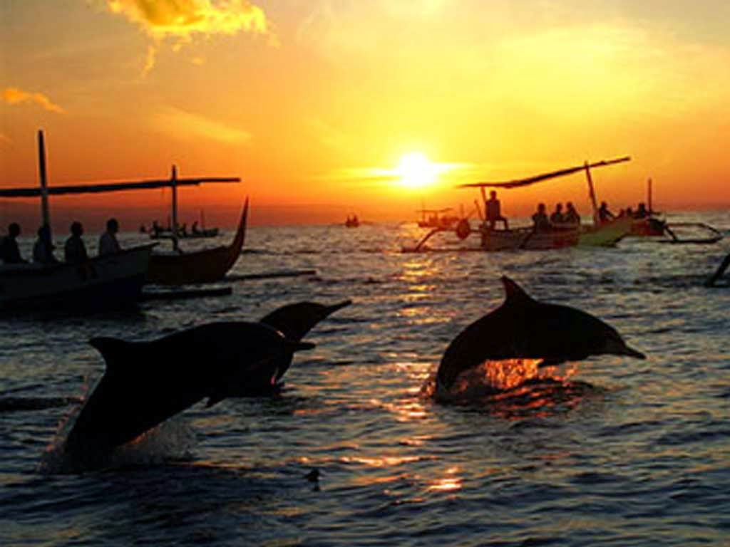 Exotic Sunset In Lovina Beach And Watching Hundreds Of Dolphins