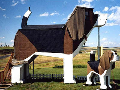 The 6 Astonishing Hotels of the World Dog Bark Park Inn Cottonwood USA