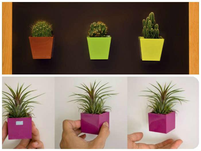 Macetas magneticas magnetic plant pots oasisingular - Macetas para colgar ...