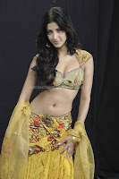 Shruti, hassan, deep, navel, photos, and, milky, cleavage, images