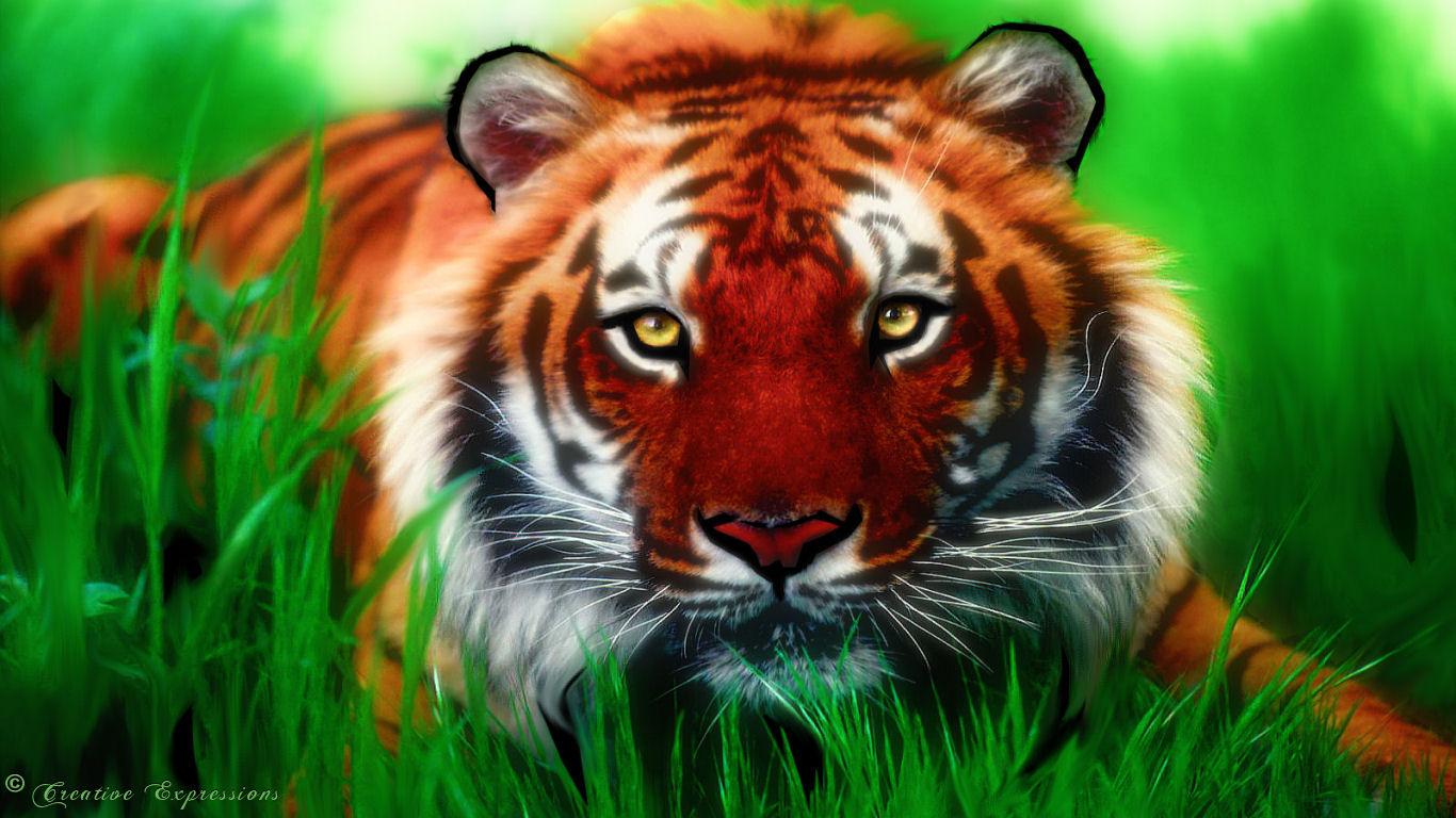 http://3.bp.blogspot.com/-d1S9dkNt9A8/TgkkT8C1S1I/AAAAAAAAACI/iTWjgwjc228/s1600/tiger_by_sc2009-d33akyp.jpg