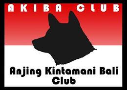 Anjing Kintamani Bali Club