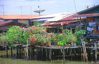 Kampong Ayer in Brunei