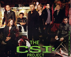 THE CSI PROJECT