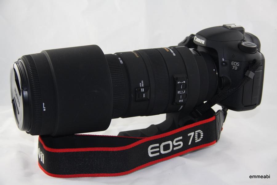 Canon 7D met Sigma 150 - 500 mm telelens