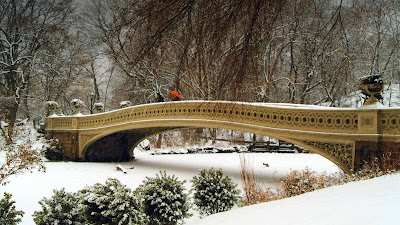 Bow Bridge in Central Park, New York City, New York (© Chuck and Sarah Fishbein/Getty Images) 400