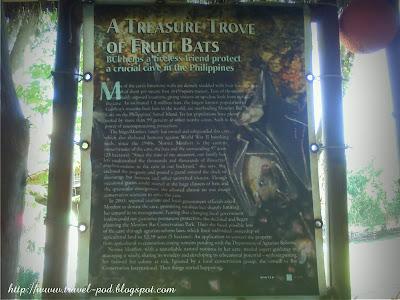 Samal Island Bat Cave Mindanao tourist spots