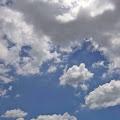 雲,空,森林,代々木公園〈著作権フリー無料画像〉Free Stock Photos