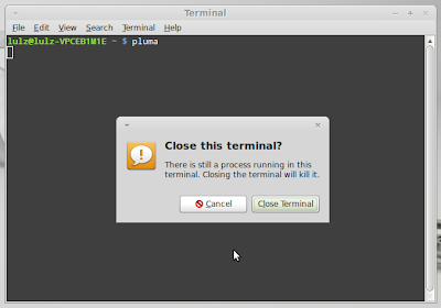 Close the terminal without killing the running program