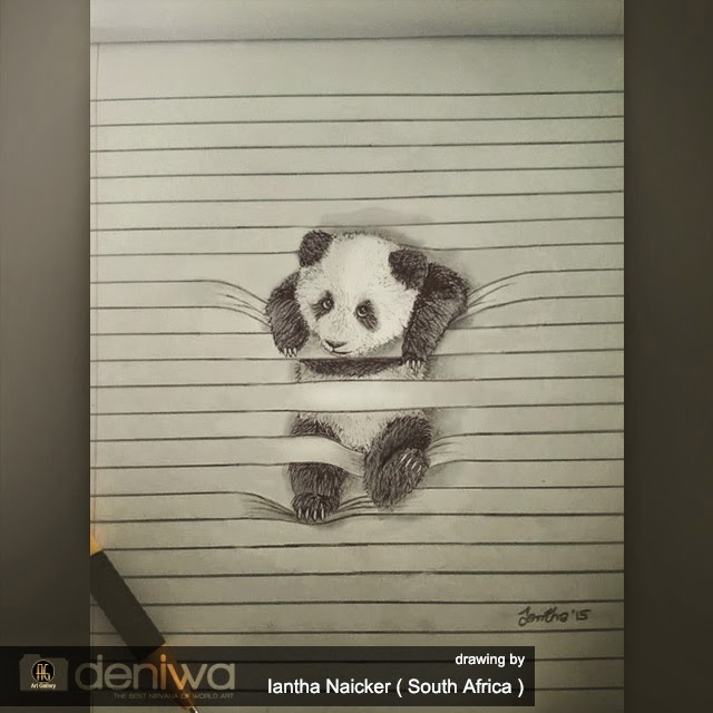 3d Line Drawing : Cute panda on d line art gallery