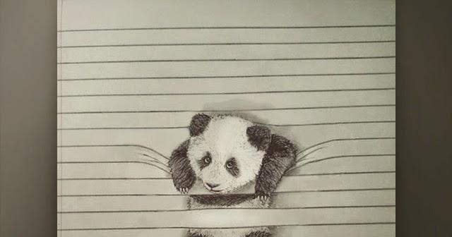 3d Line Drawings : Cute panda on d line art gallery