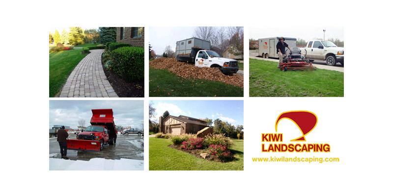 Spring Time Brings Broadleaf Weeds - Blog - Kiwi Landscaping - kiwilandscaping1