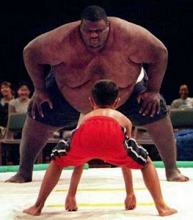 gambar gambar lucu sumo