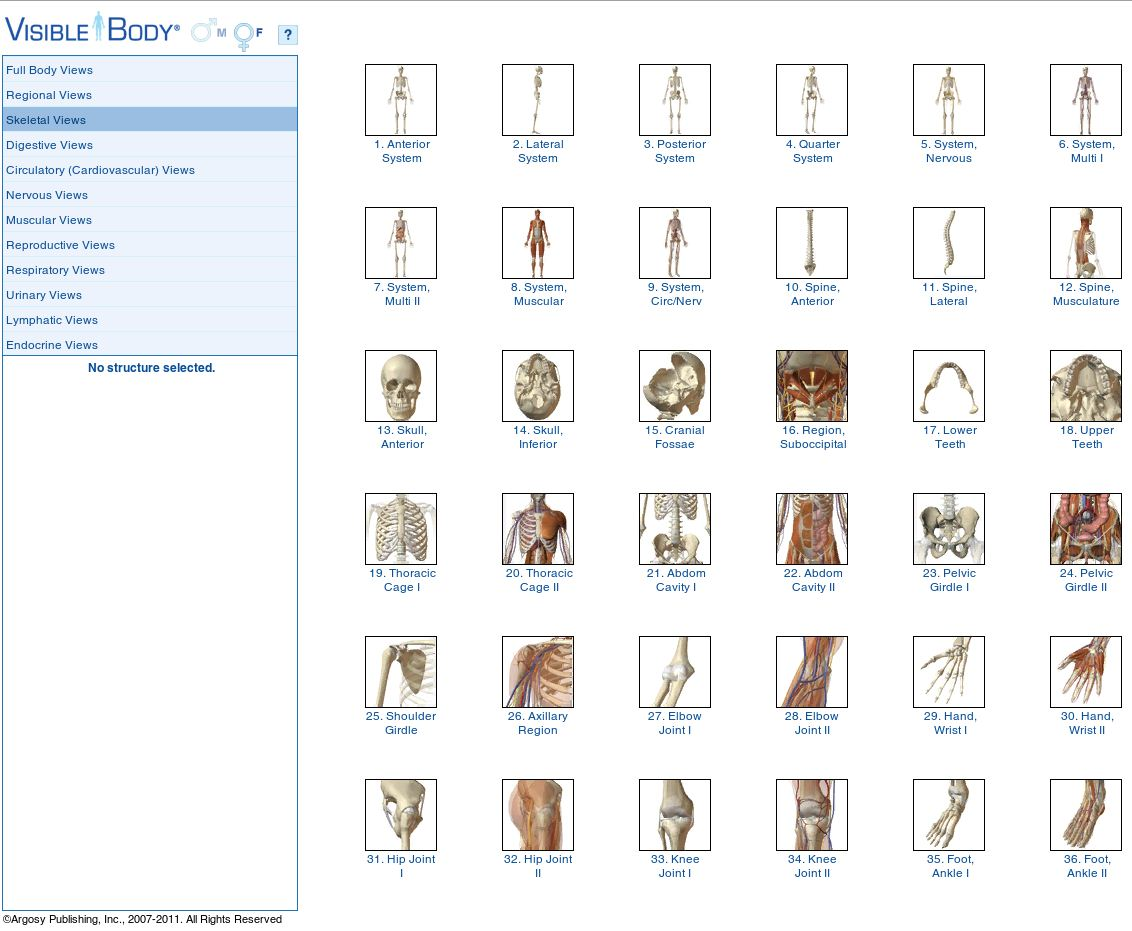 Endeavour Library News Visible Body 3d Human Anatomy Atlas