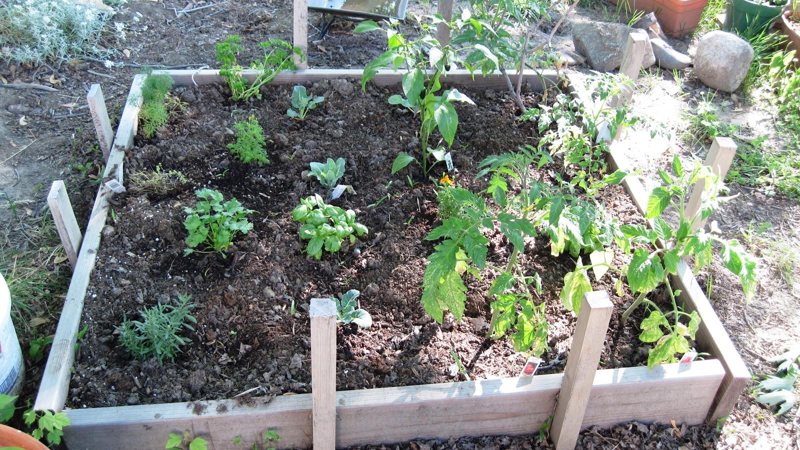 2knitwits Billings Garden