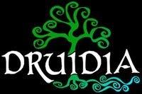 druidia celtic festival