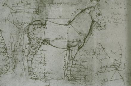 Sue F - Drawing Learning Log: Leonardo and Paul Bartlett ...