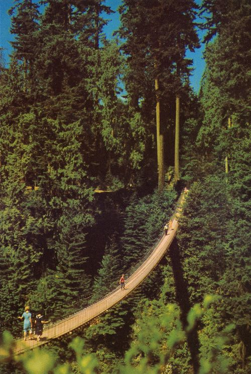 Capilano Suspension Bridge,Canada