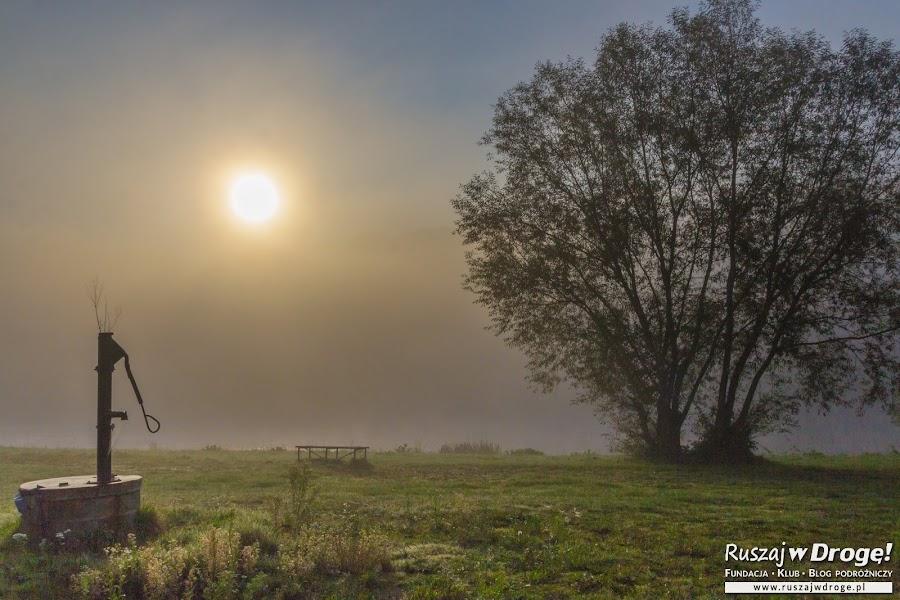 Mglisty poranek w Słonnem nad Sanem
