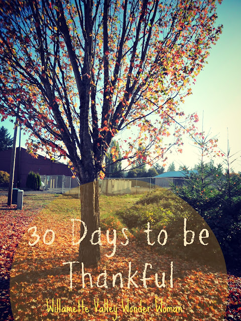 30 Things to be thankful for