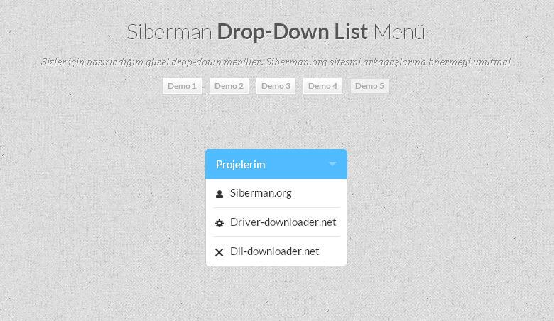 Css3 Drop Down List Menü 5
