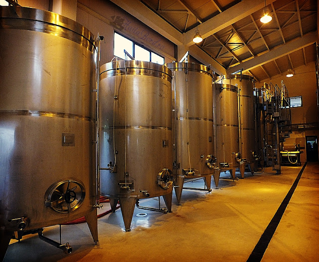 cazane vin gramma wines