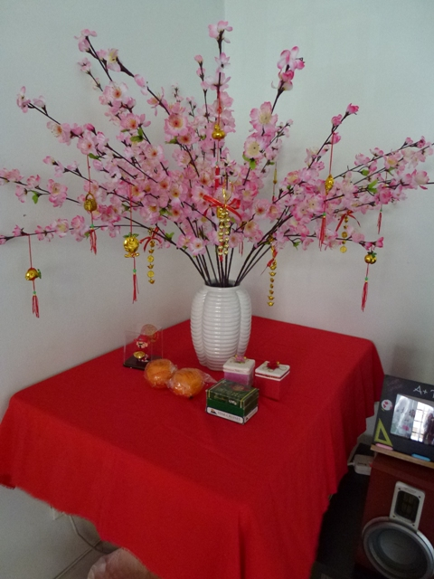 yes, its really auspicious to place a freaking pink tree on your table ...