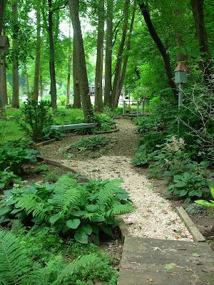 Garden Thyme with the Creative Gardener: Sycamore Gardens ...