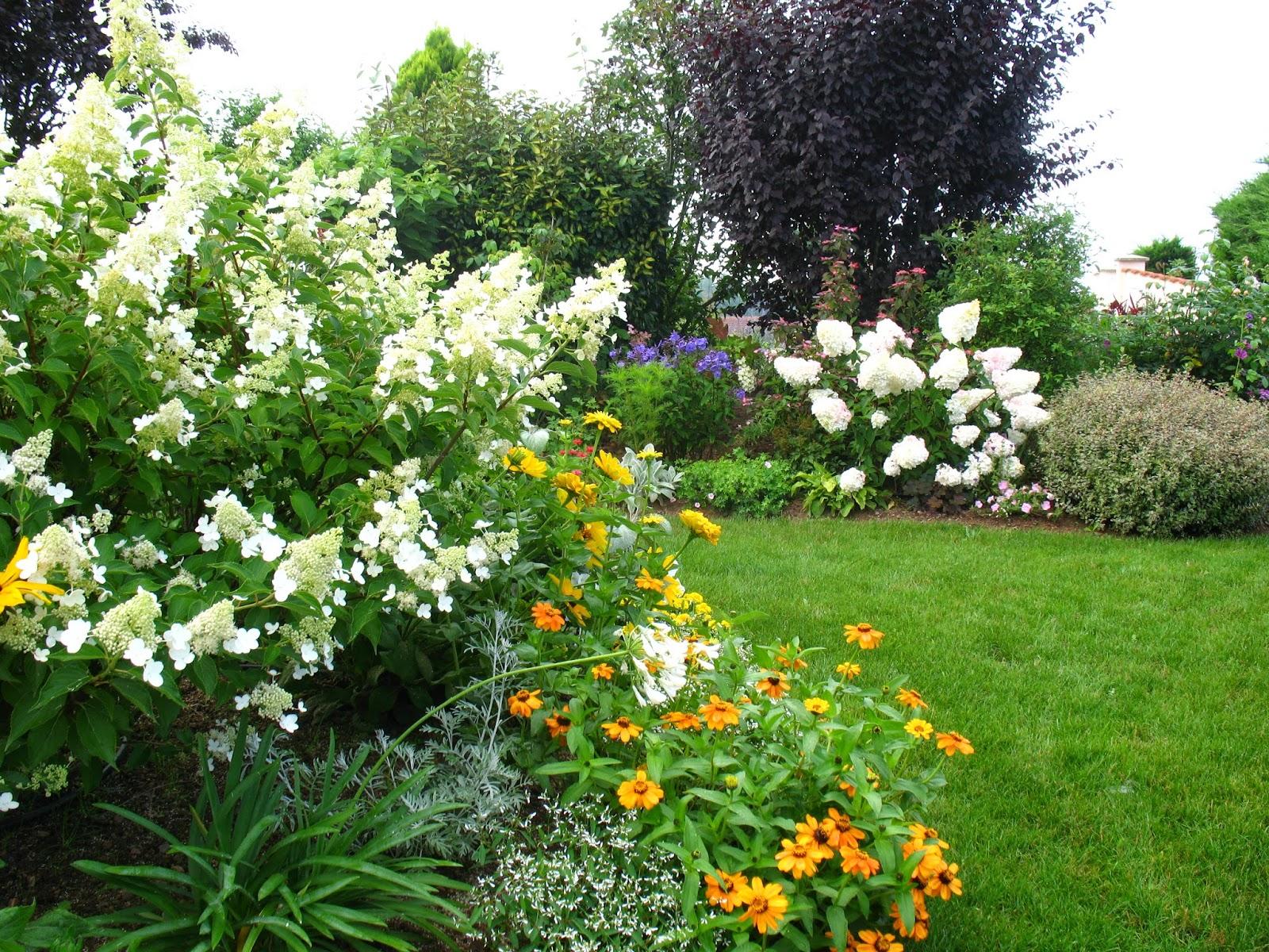 Roses du jardin Chªneland