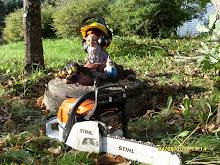Puutarhuri pihatonttu Lehto apunanne pihanne raivaamisessa ilmavammaksi puiden kaadoin leikkauksin