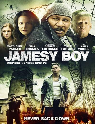 Jamesy Boy (2014) [Vose]