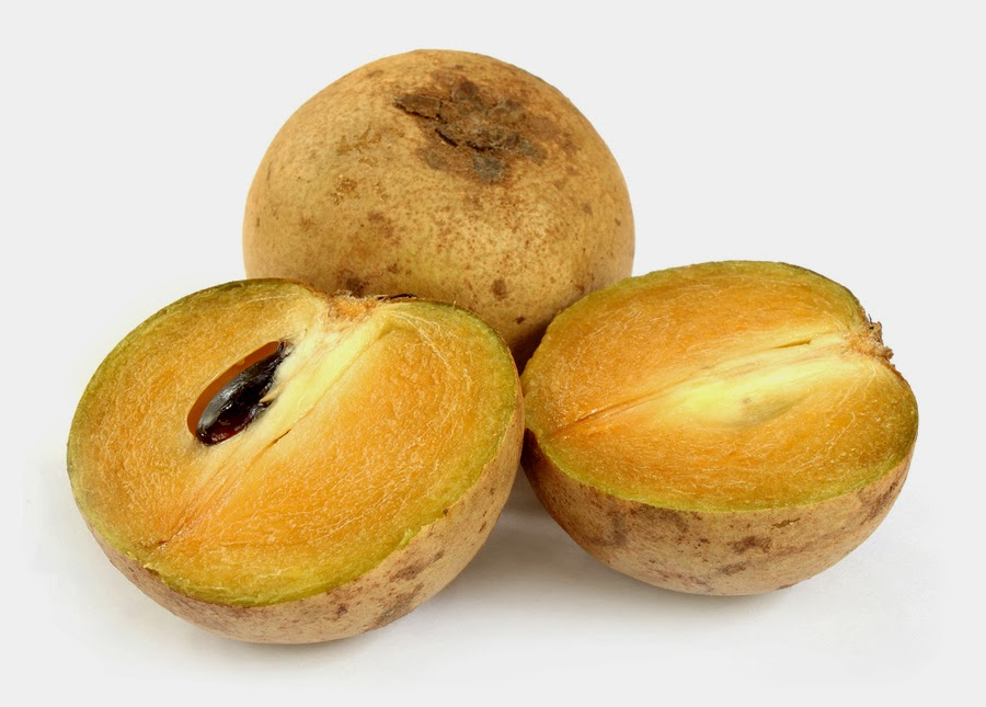 5 healthy fruits sapodilla fruit