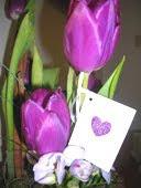 Tulipaner med kort
