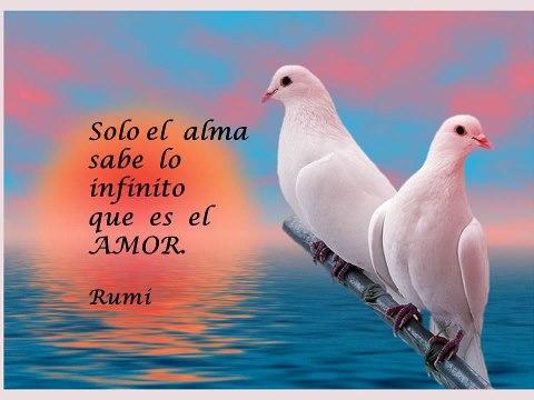 Sólo el alma sabe amar