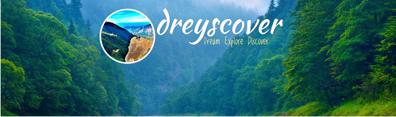 Dreyscover