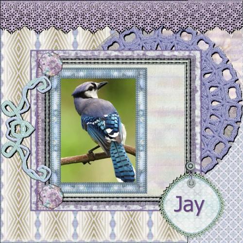 April 2016 Jay