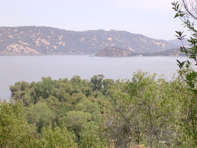 Soda Bay and the Narrows of Clear Lake in northern California