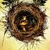 A expectativa para Animais Fantástico e #CursedChild