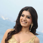 Samantha in Tight Top from Dookudu   Pics