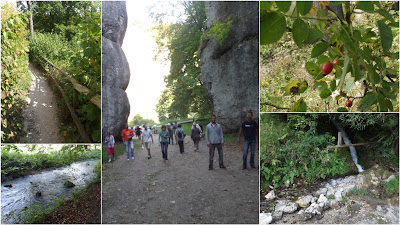 Wycieczka Szlakiem Orlich Gniazd