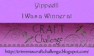 C.R.A.F.T . Challenge Winner