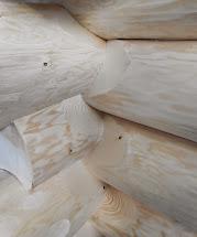 Dřevo-Holz-Wood-Lignum