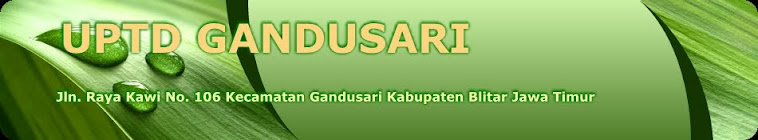 UPTD Gandusari