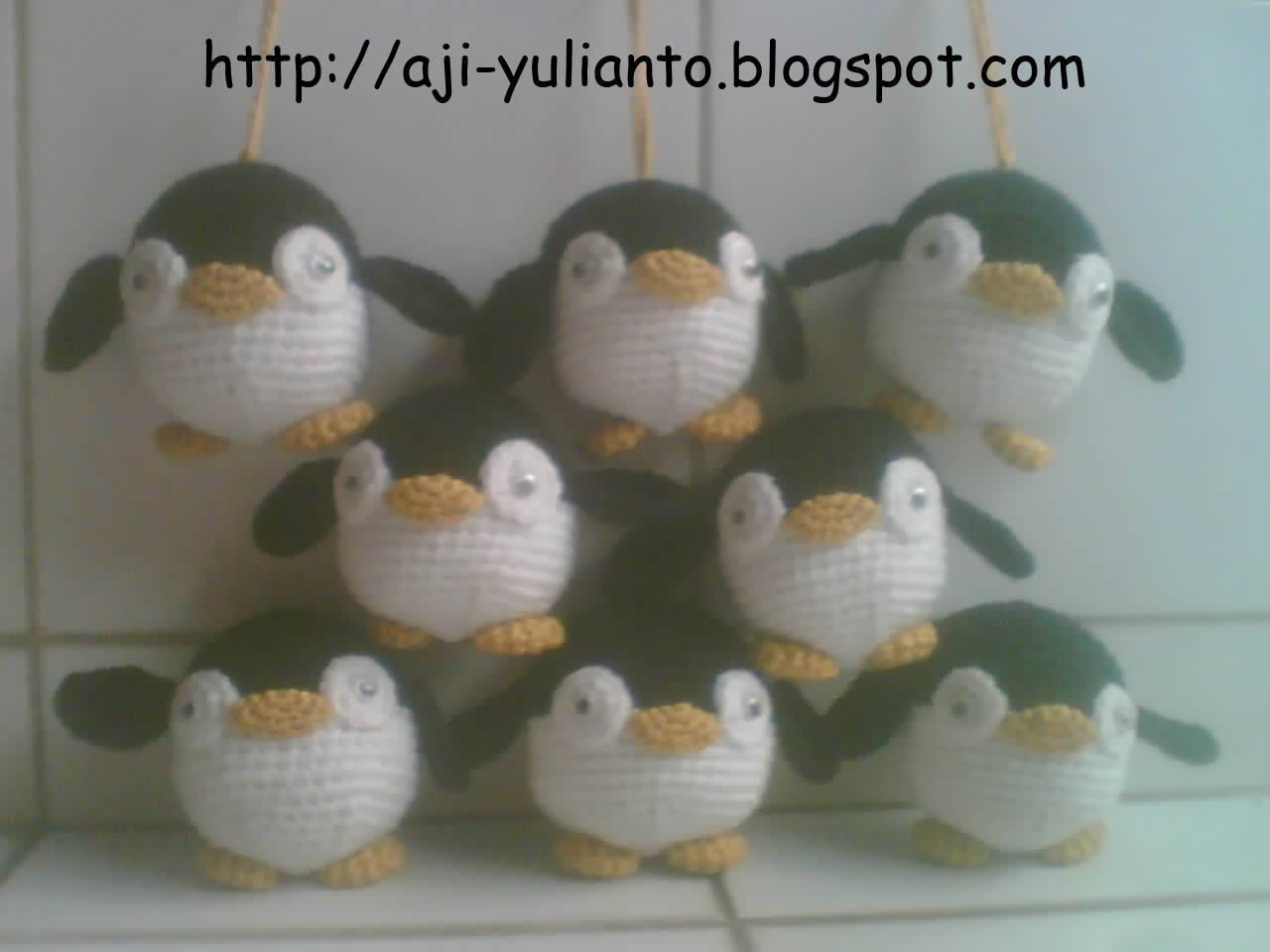 Baby Penguin in Chearleaders formation:D