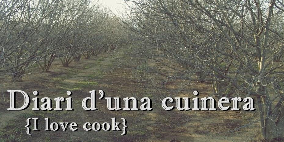 Diari d'una cuinera