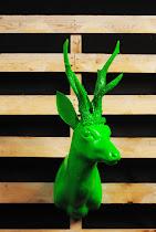 cervo verde acido